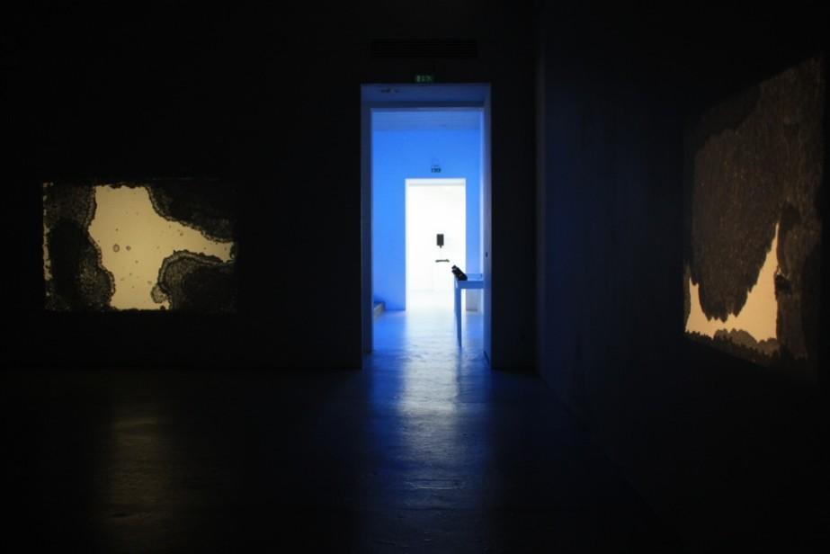Temple Bar Gallery + Studios announces recipients of HIAP/TBG+S Residency 2015  'Human Meterology'; Hanna Husberg