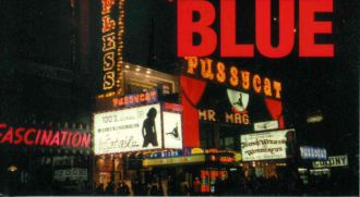 Samuel R. Delany, Times Square Red Times Square Blue (NYU Press)