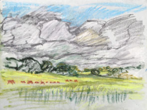 Cattle, Near The Boyne, 2019, Oil pastel on paper, 30 x 40 cm, Courtesy the artist