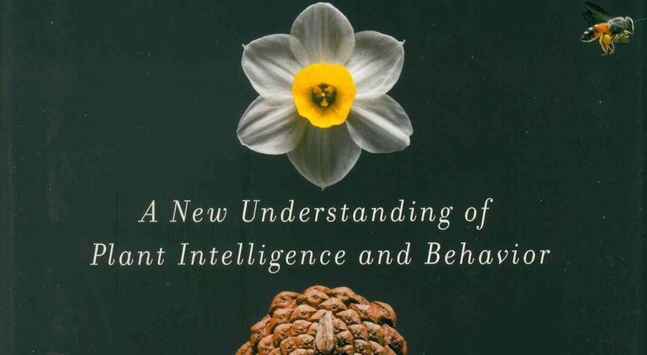 Design as an Attitude: Nominated books by Es Devlin, invited by Alice Rawsthorn  Stefano Mancuso, The Revolutionary Genius of Plants: A New Understanding of Plant Intelligence and Behavior (Atria Books)