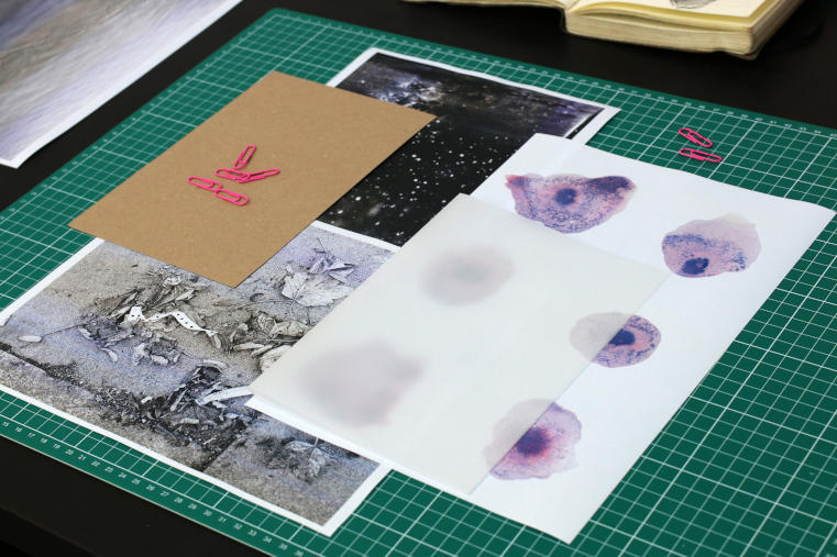 DABF19 Open Studio: Chloe Brenan