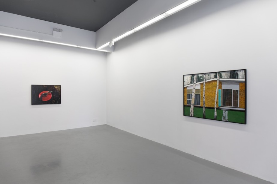 Relatively Speaking: A guided walking tour  Stephen Loughman, Proven Answers, 2018, Installation view, Temple Bar Gallery + Studios. Photo: Kasia Kaminska